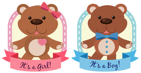 Banner design with teddy bears in blue an pink