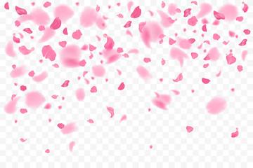 Falling flower petals