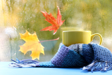 warming autumn atmosphere/ yellow mug in a blue scarf on the background of a wet window with maple leaves