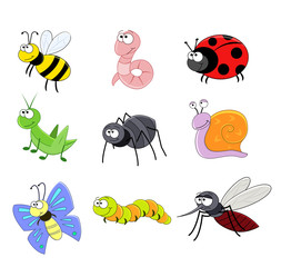 big set with the cartoon insects vector illustration