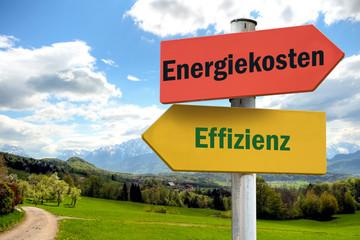 Schild 252 - Effizienz
