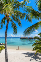 Wall Mural - Tahiti beach vacation woman at luxury resort. French Polynesia travel destination tourist relaxing at turquoise pristine water in ocean paradise with palm trees background.