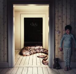 Snake in the room