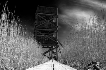 Wooden bird observation tower black and white photo from the low angle