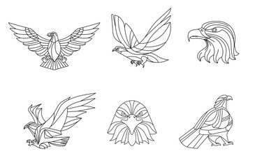 Eagle, Line vector, sign and symbol, Vector illustration.
