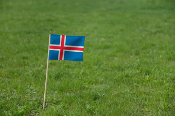 Iceland flag, Icelandic flag on a green grass lawn field background. National flag of Iceland waving outdoor
