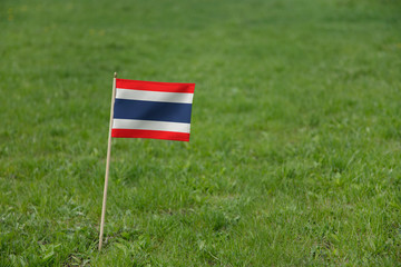 Thailand flag, Thai flag on a green grass lawn field background. National flag of Thailand waving outdoor