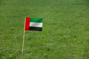 U.A.E. flag, the United Arab Emirates flag on a green grass lawn field background. National flag of UAE waving outdoor