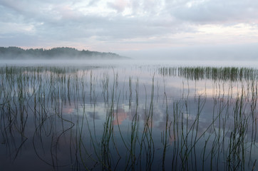 Morning fog above the river Ikaalinen Finland Europe