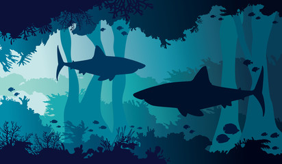 Underwater nature, shark, coral cave, fish, sea.