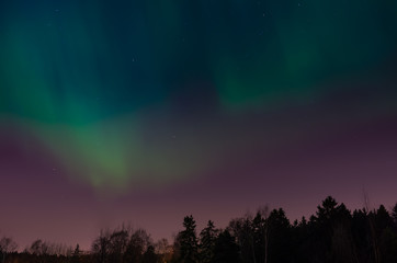 Aurora borealis above the scandinavian forest captured in Helsinki Finland Northern Europe