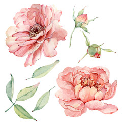 Handpainted watercolor flowers set in vintage style.