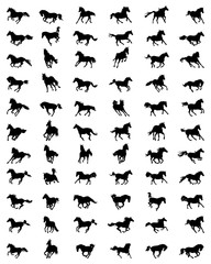 Black silhouettes  of horses in galloping on a white background