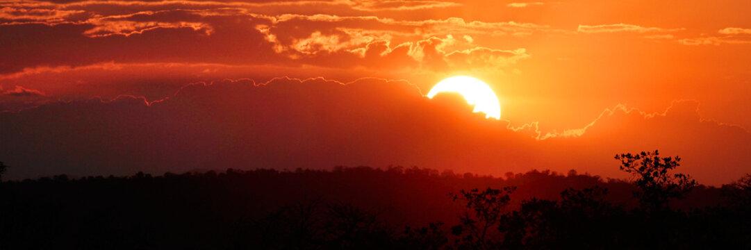Sonnenuntergang im Tarangiri Nationalpark, Tansania, Ostafrika, Panoramaaufnahme