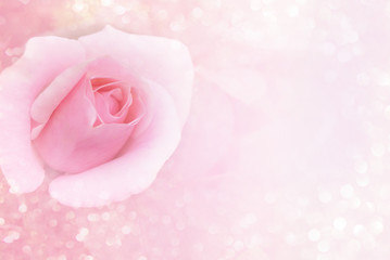 soft pink flower background and glitter light with copy space for valentine or wedding card
