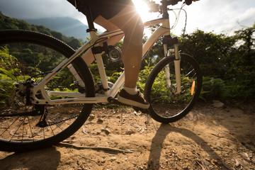 Photo sur Plexiglas Cyclisme woman cyclist cycling on summer forest trail