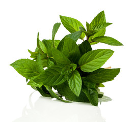 a bunch of fresh peppermint on a white background