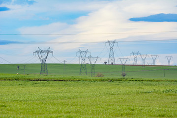 electric poles passing through the fields