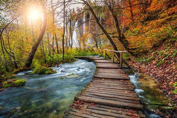 Wall Mural - Fantastic tourist pathway in colorful autumn forest, Plitvice lakes, Croatia