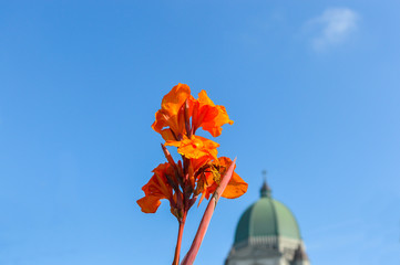 Saint Joseph's Oratory of Mount Royal located in Montreal is Canada's largest church behind the Blooming orange canna (Canna lily).