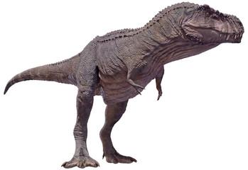 3D rendering of a Tyrannosaurus Rex standing.