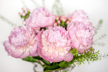 Fototapete - Pink peonies composition