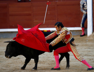 Bullfighter Diego San Roman performs a pass to a bull during the Pilar's bullfighting fair at Las Ventas bullring in Madrid