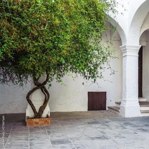 Spanischer Innenhof innenhof einer spanischen villa in vejer de la frontera stockfotos