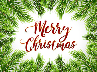 Christmas card with text and fir tree border, vector illustration. Realistic cedar branches, frame isolated on white. Merry christmas lettering, hand drawn calligraphy.