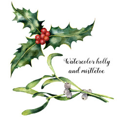Watercolor holly and mistletoe set. Hand painted holly and mistletoe branch with red and white berry isolated on white background. Christmas botanical clip art for design or print. Holiday plant.
