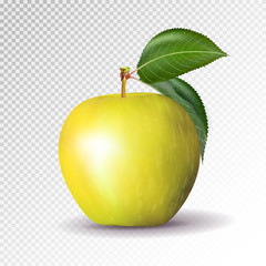 Yellow apple isolated on transparent background. Vector, 3D