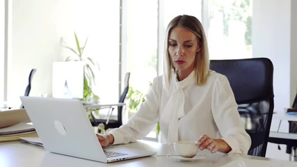 Wall Mural - Businesswoman with laptop in her office at the desk, working.