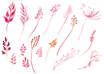 Romantic watercolor pink branch and flowers collection