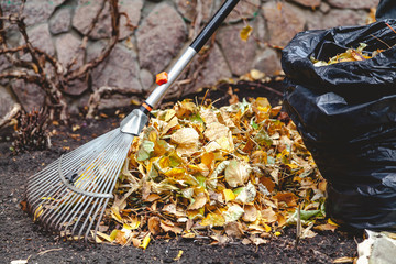 rolling rakes collect fallen leaves in big pile