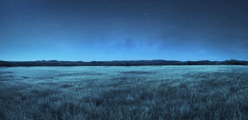 Photo sur Plexiglas Sauvage Meadow landscape at night time