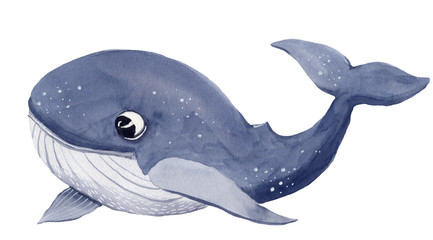 Watercolor christmas whale cartoon illustration