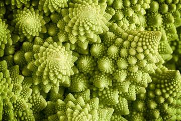 Romanesco broccoli vegetable close up