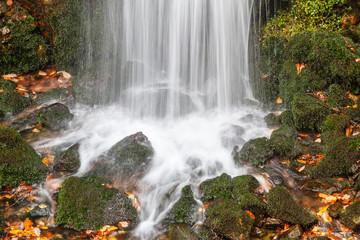 Cascada, musgo y rocas, Río Alba. Ruta del Alba. Parque Natural de Redes, Asturias, España.