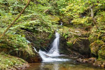Cascada  y vegetación en el Río Alba. Ruta del Alba. Parque Natural de Redes, Asturias, España.