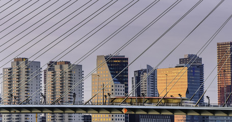 Foto auf Gartenposter Schwan Rotterdam, Netherland's Erasmus bridge close up of wires with downtown skyline at sunset. Electric tram passing from right to left