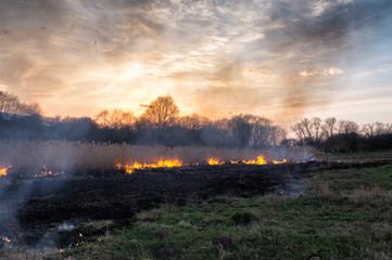 Fires sunset landscape
