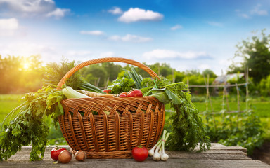 Raw vegetable in wicker basket