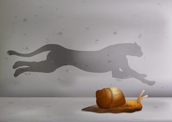 escargot - vitesse - symbole - guépard - concept - objectif - ombre - challenge