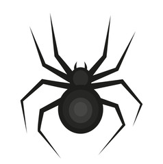 Spider icon is a flat style. Isolated on white background. Vector illustration