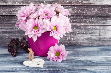 Pink chrysanthemum in concrete pot