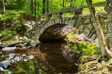 Calm bridge