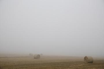 Hay Bales in Foggy England