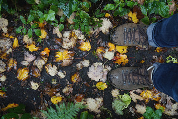 Looking down on hiking shoes in a forest in fall