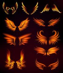 Bird fire wings fantasy feather burning fly mystic glow fiery burn hot art vector illustration on black.