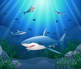 Cartoon shark with Coral Reef Underwater in Ocean